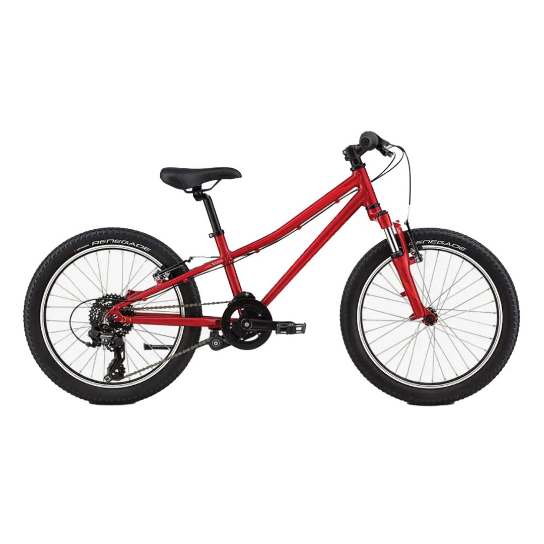 north lake tahoe kids bike rental